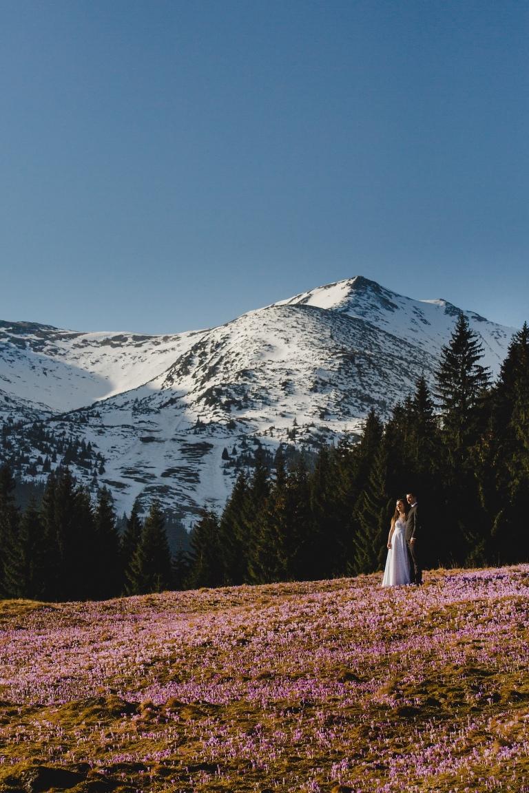 Natalia i Artur 269 krokusy, oryginalny plener ślubny, plener ślubny, sesja ślubna, sesja w tatrach
