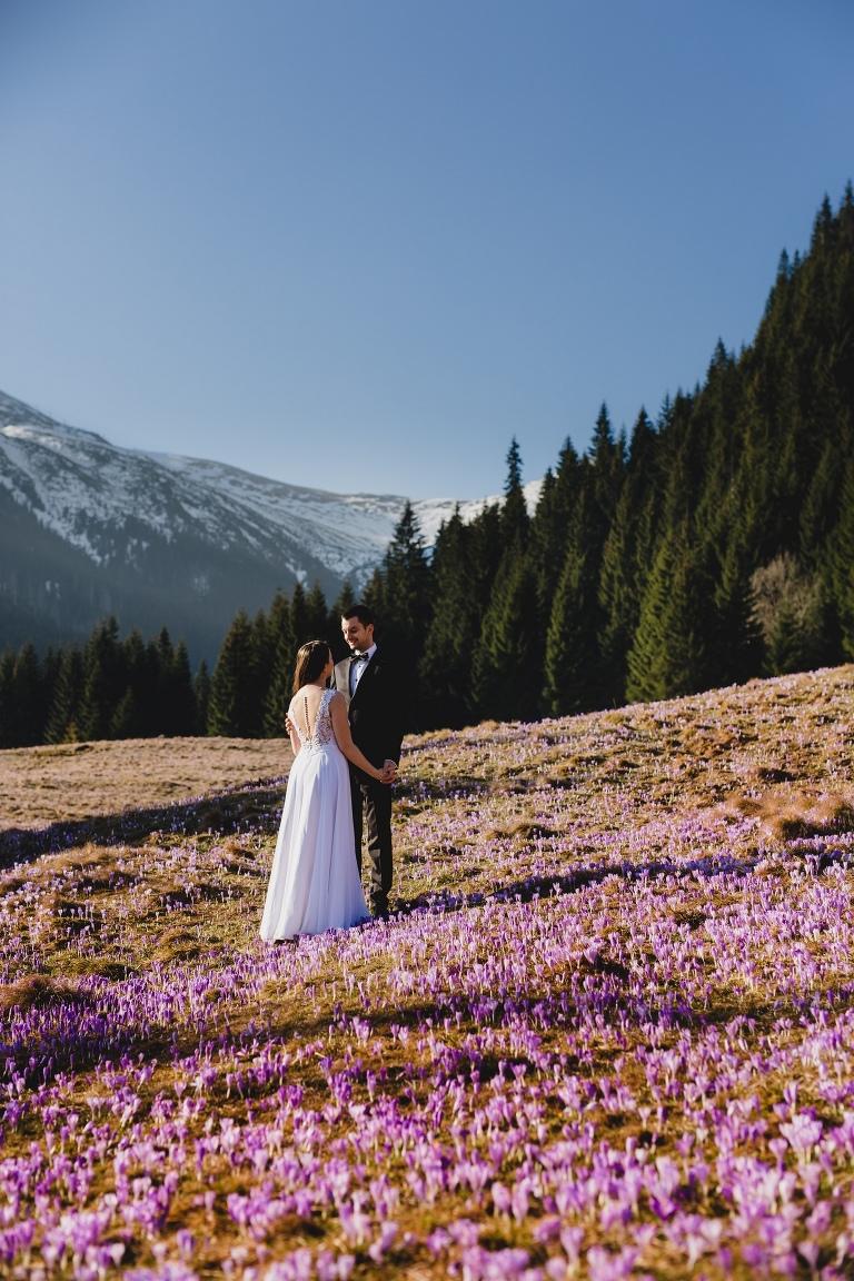 Natalia i Artur 279 krokusy, oryginalny plener ślubny, plener ślubny, sesja ślubna, sesja w tatrach