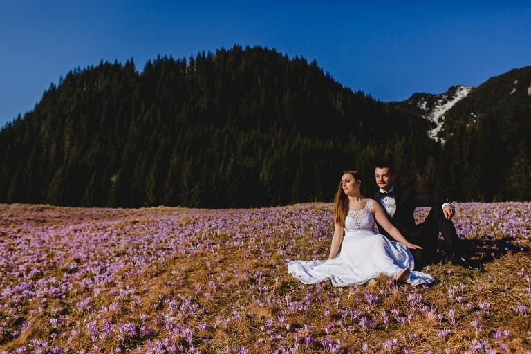 Natalia i Artur 285 krokusy, oryginalny plener ślubny, plener ślubny, sesja ślubna, sesja w tatrach
