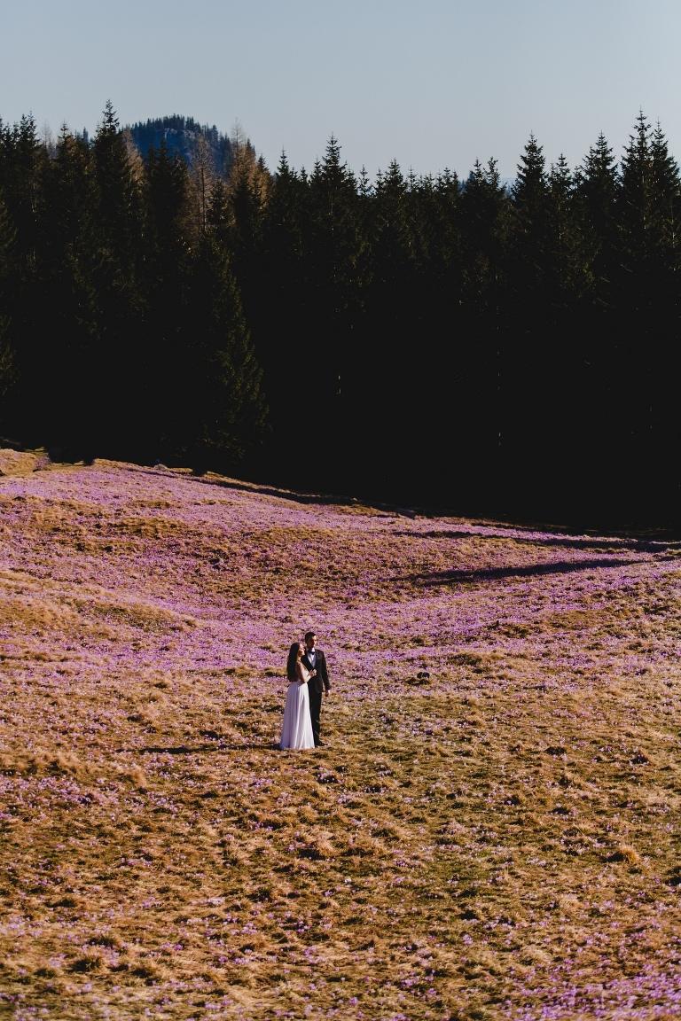 Natalia i Artur 325 krokusy, oryginalny plener ślubny, plener ślubny, sesja ślubna, sesja w tatrach