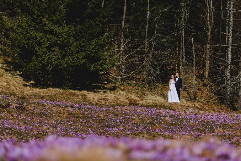Natalia i Artur 343 krokusy, oryginalny plener ślubny, plener ślubny, sesja ślubna, sesja w tatrach