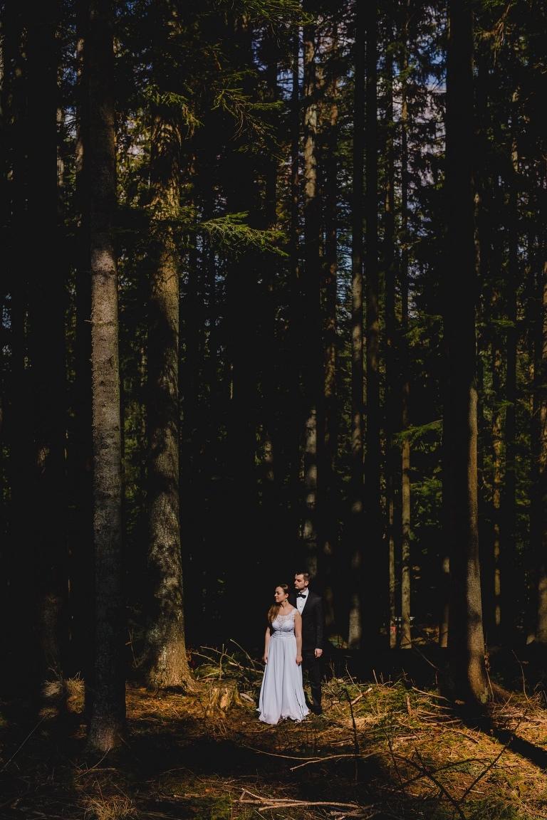 Natalia i Artur 377 krokusy, oryginalny plener ślubny, plener ślubny, sesja ślubna, sesja w tatrach