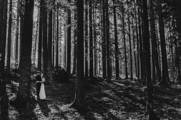 Natalia i Artur 387 krokusy, oryginalny plener ślubny, plener ślubny, sesja ślubna, sesja w tatrach