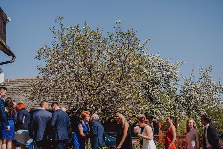 Aga i Artur Reportaż | Wiwenda | Bochnia - Połom Duży 681 oryginalny plener ślubny, Połom Duży, Sesja, sesja ślubna, sesja w szklarni, wedding session, wesele, Wiwenda, zdjęcia ślubne