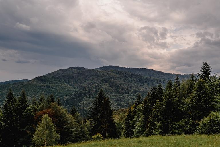 Ania i Adam | Kiedy w górach pada deszcz | Sesja ślubna 95